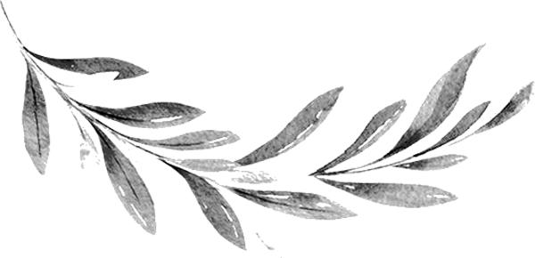 Parallax Leaf - OKS